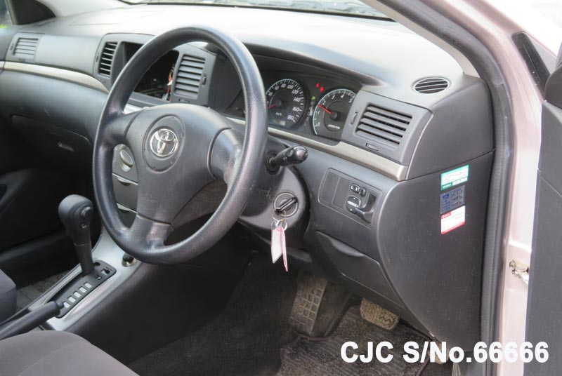 Toyota Corolla Runx in Pink for Sale Image 8