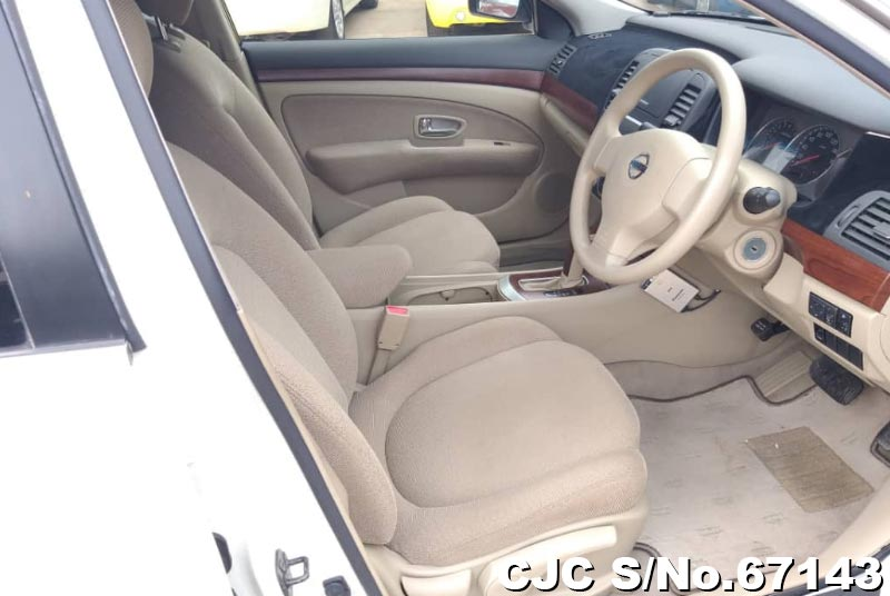 Nissan Bluebird Sylphy in White for Sale Image 7