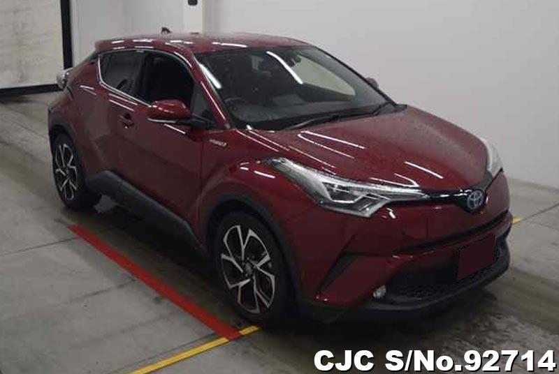 Toyota / C-HR 2016 Stock No. TM1141729